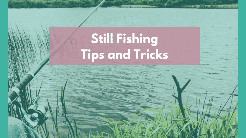 Still Fishing TIps